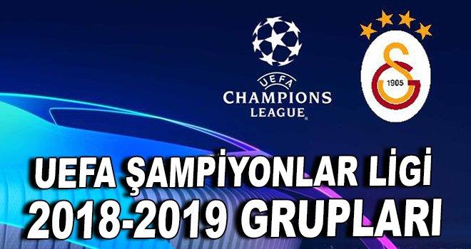 Uefa Şampiyonlar Ligi 2018-2019 Grupları